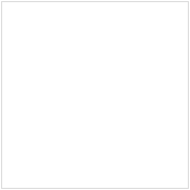 Fix Your Credit Report Today